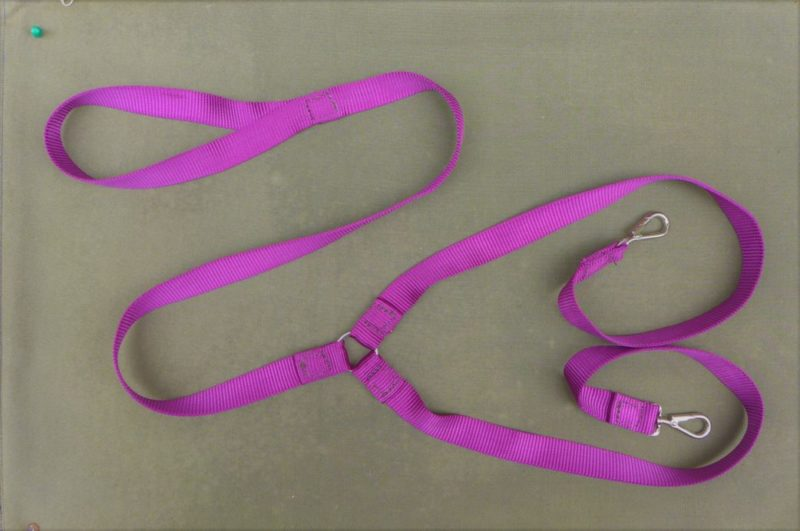 Dual Dog Lead in Purple