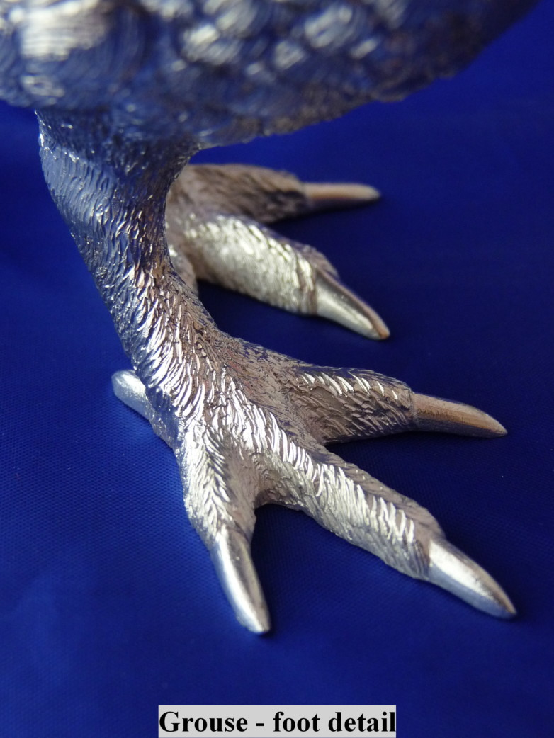 Grouse foot detail