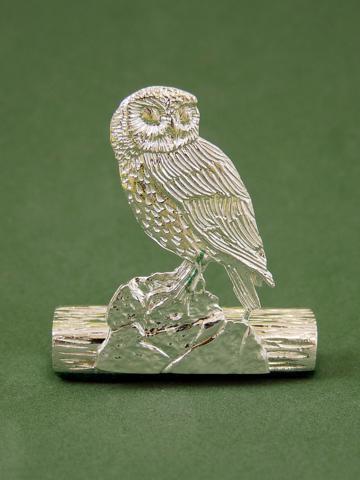 TC21-Small-Owl