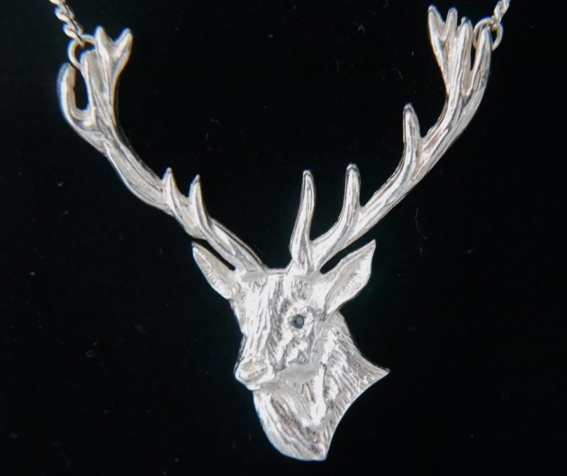 stag-head-close-up