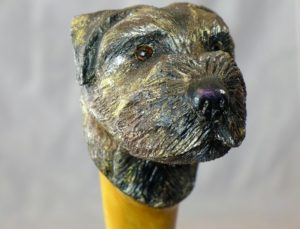 Border Terrier Head